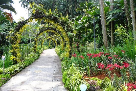 Le Jardin botanique de Singapour